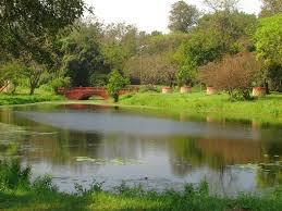 Botanical gardens in Calcutta